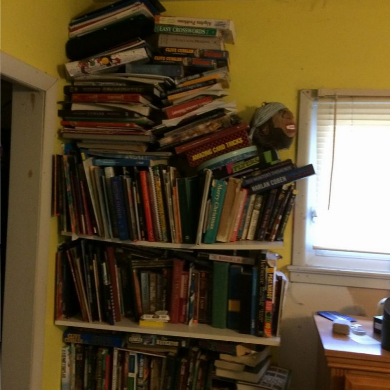 Next project: Bookshelves.